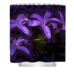 Cattleya Orchid Flower Shower Curtain