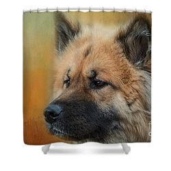 Caucasian Shepherd Dog Shower Curtain by Eva Lechner