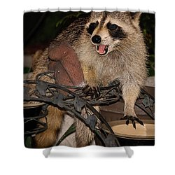 Caught Shower Curtain by DigiArt Diaries by Vicky B Fuller