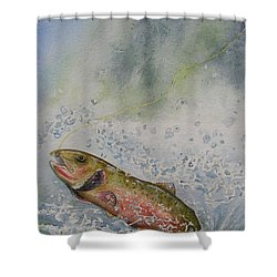 Caught Shower Curtain by Gale Cochran-Smith