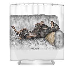 Caution Guard Dog - Doberman Pinscher Print Color Tinted Shower Curtain