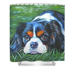 Cavalier King Charles Spaniel Tricolor Shower Curtain