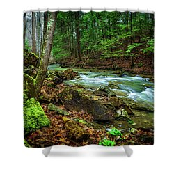Cave Branch #15 Shower Curtain