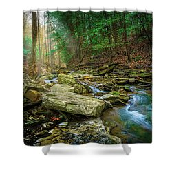 Cave Branch #9 Shower Curtain
