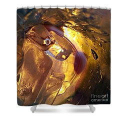 Cavern Of Wonders Shower Curtain