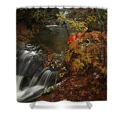 Shower Curtain featuring the photograph Cecil Cove Runoff by Michael Dougherty