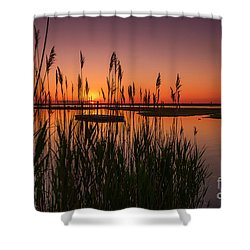Cedar Beach Sunset In The Reeds Shower Curtain