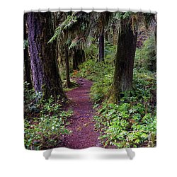 Cedar Creek Trail #3 Shower Curtain