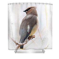 Cedar Wax Wing Shower Curtain by Jim Fillpot