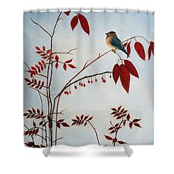 Cedar Waxwing Shower Curtain by Laura Tasheiko