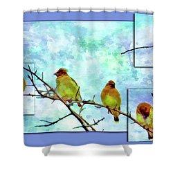 Cedar Waxwing Party Shower Curtain