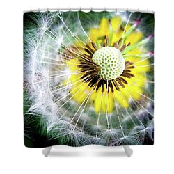 Celebration Of Nature Shower Curtain