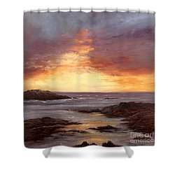 Celebration Shower Curtain by Valerie Travers