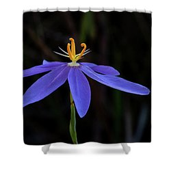 Celestial Lily Shower Curtain