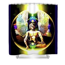 Celestial  Realms . . .  Shower Curtain