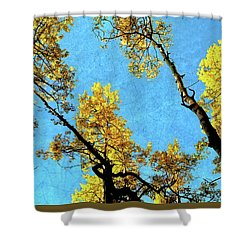 Cellophane Flowers Of Yellow And Green Shower Curtain by Jim Hill