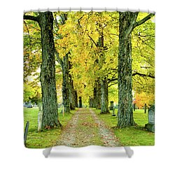 Shower Curtain featuring the photograph Cemetery Lane by Greg Fortier