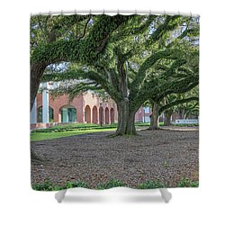 Shower Curtain featuring the photograph Centennial Oaks by Gregory Daley  PPSA