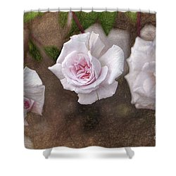 Center Of Hope Shower Curtain by Gina Savage