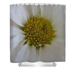 Center Piece Shower Curtain