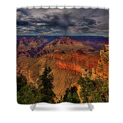 Center Stage Shower Curtain