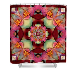 Centerpeace Shower Curtain by Bell And Todd
