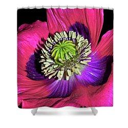 Centerpiece - Poppy 020 Shower Curtain