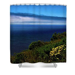 Central Coast Beach 3 Shower Curtain