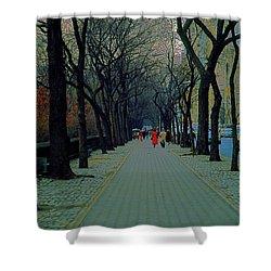 Central Park East Shower Curtain