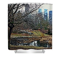 Shower Curtain featuring the photograph Central Park In January by Sandy Moulder