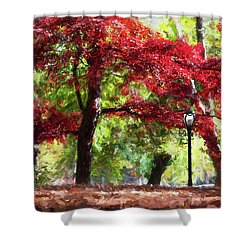 Central Park In Manhattan Shower Curtain
