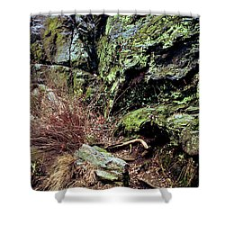 Shower Curtain featuring the photograph Central Park Rock Formation by Sandy Moulder