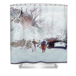 Central Park Snow Shower Curtain
