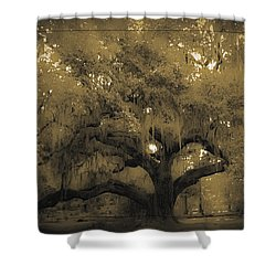Centurion Oak Shower Curtain