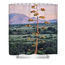 Shower Curtain featuring the photograph Centuryplant by Gina Savage