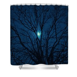 Cerulean Night Shower Curtain by Denise Beverly