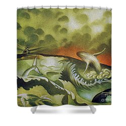 Cetacean Sunset Shower Curtain