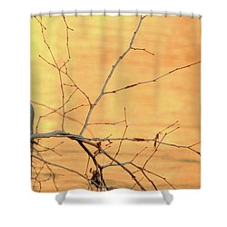Chagrin River Gold Shower Curtain