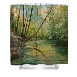 Chagrin River In Spring Shower Curtain