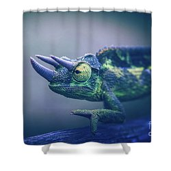 Shower Curtain featuring the photograph Chamaeleo Jacksonii by Sharon Mau