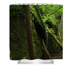 Chamberlain Falls  Shower Curtain