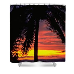 Champagne Sunset Shower Curtain by Travel Pics