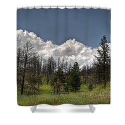 Chance Of Clouds Shower Curtain by Deborah Klubertanz