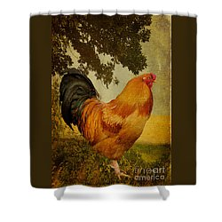 Chanticleer Shower Curtain