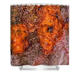 Chaos Theory Shower Curtain by Swank Photography