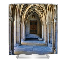 Chapel Arches Shower Curtain