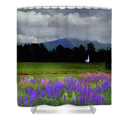Chapel In The Lupine Mindscape Shower Curtain