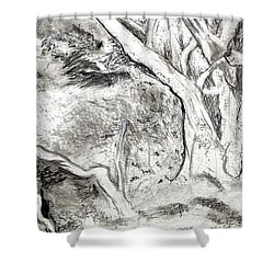 Charcoal Copse Shower Curtain
