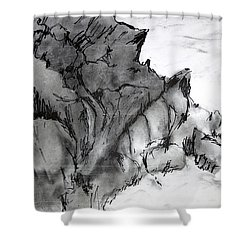 Charcoal Sea Rocks Shower Curtain