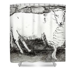 Charcoal Sheep Shower Curtain